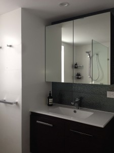 Wooloowin vanity mirror cabinet mosaic feature tile